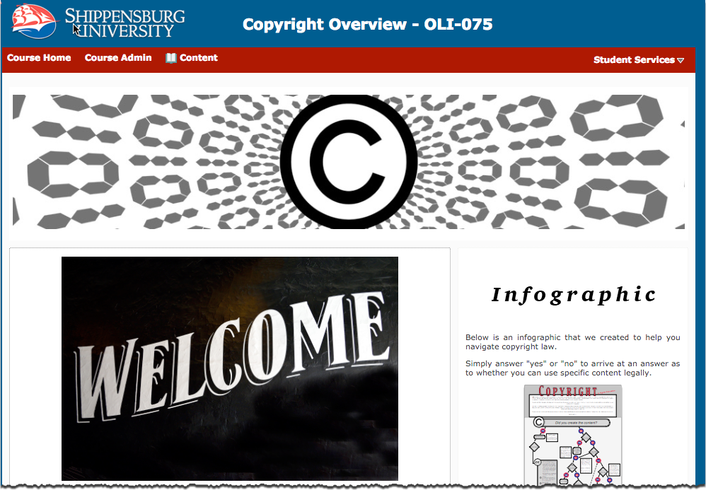 screenshot of copyright course